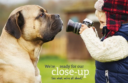 We're ready for our close-up. See what we're all about!