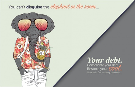 You can't disguise the elephant in the room...your debt.