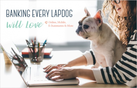 Banking every lapdog will love