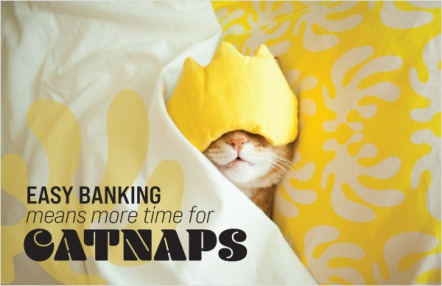 Easy banking means more time for catnaps