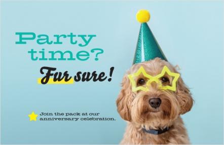 Party time? Fur sure!
