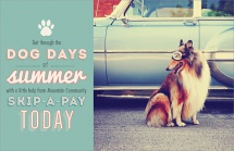Get through the dog days of summer with a little help from Mountain Community skip-a-pay today.