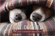 Stay Covered with Overdraft Protection
