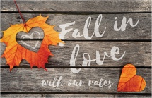 Fall in love with our rates.