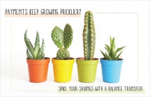 Payments keep growing pricklier? Spike your savings with a balance transfer!
