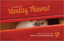 Scared of Identity Thieves?