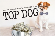 When Fido needed financing, he went straight to the top dog