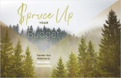 Spruce Up Your Budget