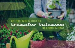 Give Your Finances a Little TLC