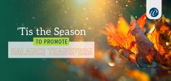 'Tis the Season to Promote Balance Transfers