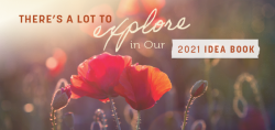 There's a Lot to Explore in Our 2021 Idea Book