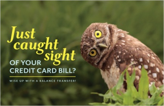 Just Caught Sight of Your Credit Card Bill?