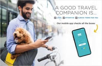 A good travel companion is...